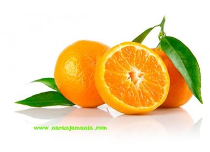 Mandarine Clemenvilla 9kg