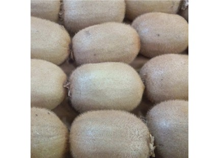 Kaufen Kiwi naranjamania Fall 5 kg