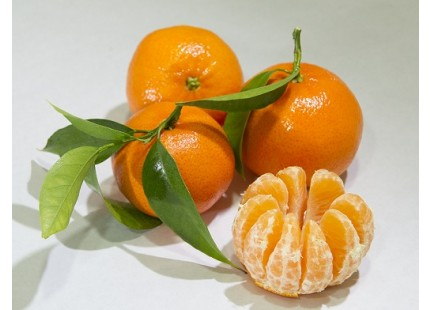 Mandarine Tardia 9kg