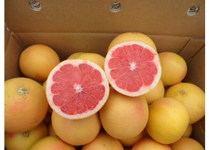 Box 15kg Pink Grapefruit