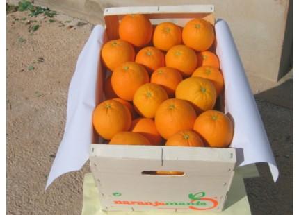 Mixed Box 20kg Orangensaft (15kg) + Valencia Tomate (5kg)