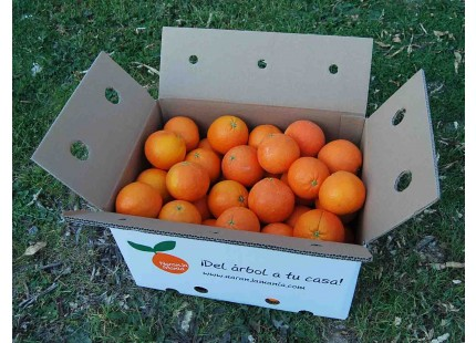 Orange Lane-Late Saft 5kg