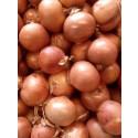 Zwiebeln online kaufen 1kg