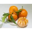 Mandarine Tardia 19kg