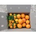 Schachtel 9kg Kaki Persimon und Clementine