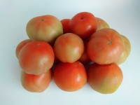 Optimum Tomate MINI 1kg