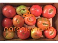 rosa Tomate Barbastro 1kg ✔