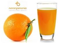 Orange Navelina Saft 19kg