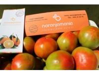 Optimale Tomate 14kg mittlerer Größe