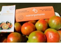 Mixed Box 15kg Orangensaft (10kg) + Valencia Tomate (5kg)