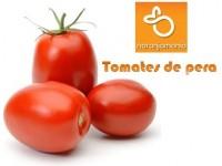Birnen-Tomate 1kg