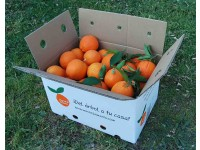 Orange Lane-Late Tafel + Lane Late Saft 15kg